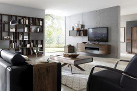 Wohnzimmer, Bücherregal, Massivholz Wildnuss